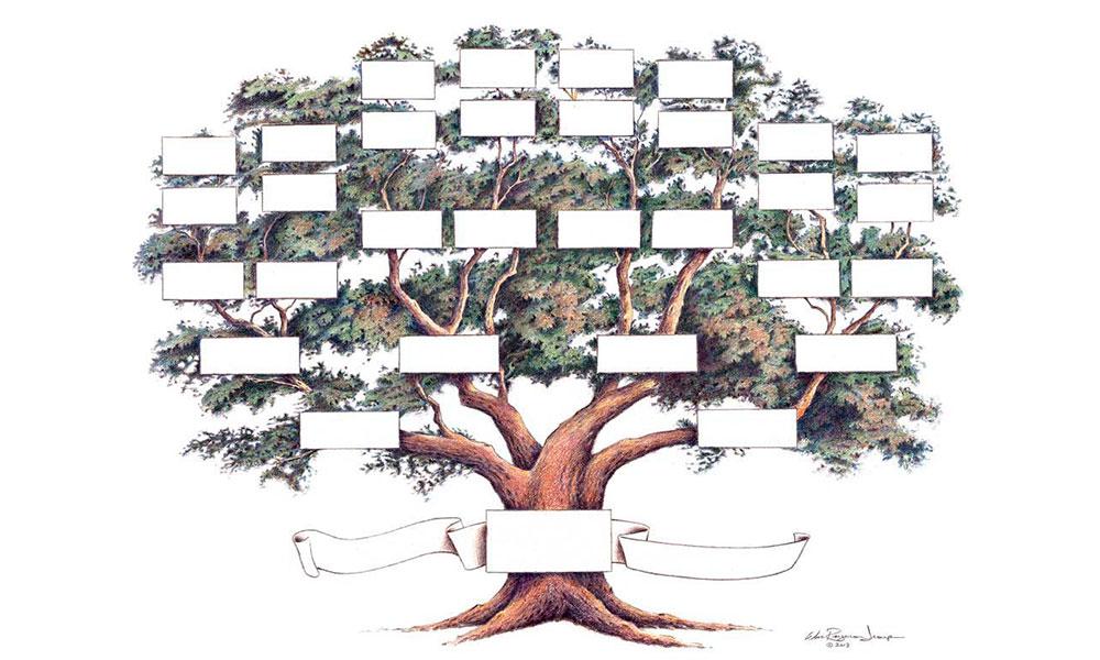 Pesquisade árvore genealógica italiana